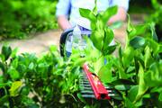 Greenworks 24V Hedge Trimmer Skin
