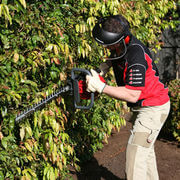 Honda HHH25D Hedge Trimmer