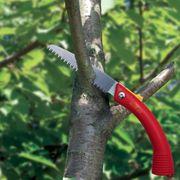 Wolf Gaten Folding Pruning Saw 36cm